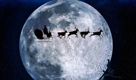 Lamia toivottaa hyvää joulua!